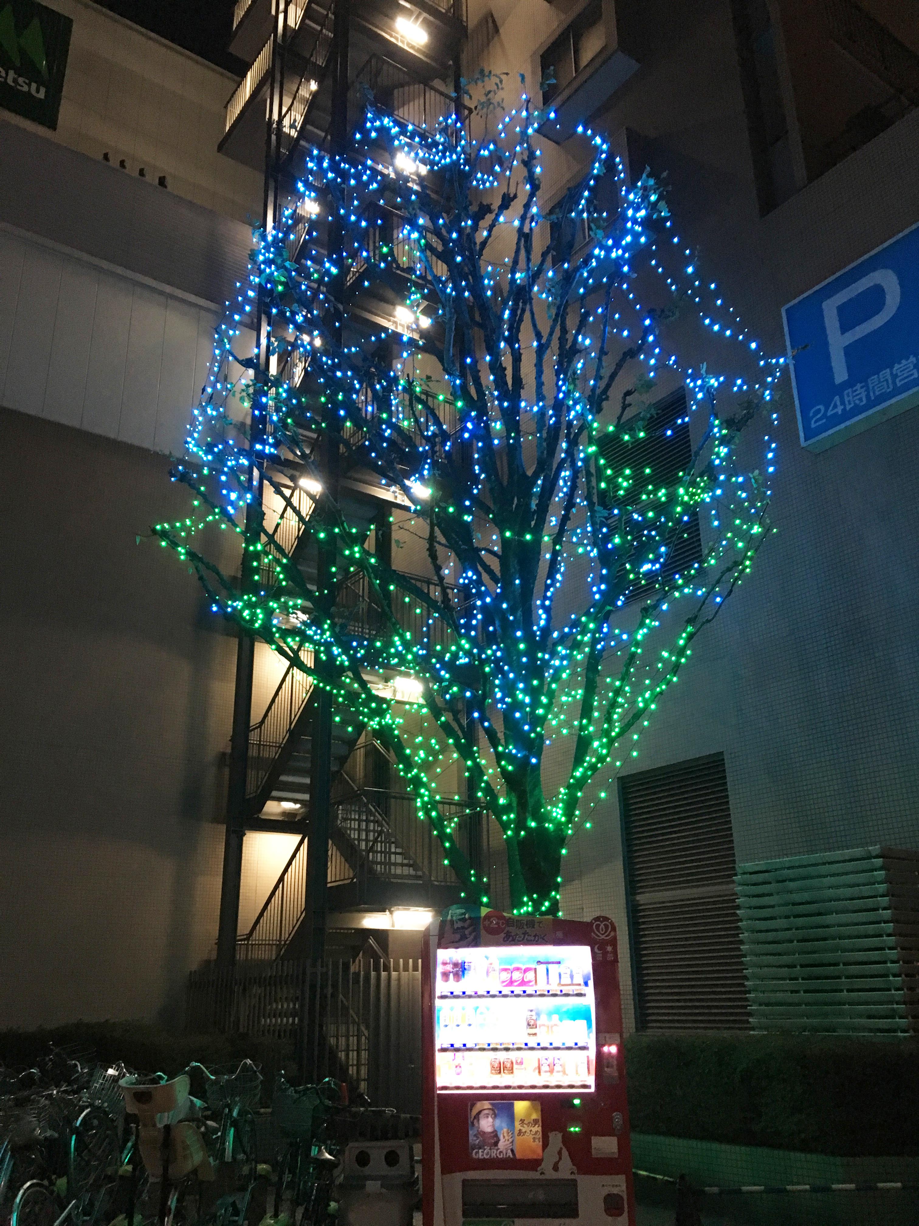 マルエツ国領店前のクリスマスツリー