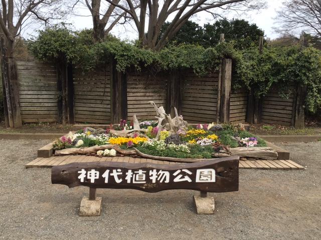 神代植物公園4