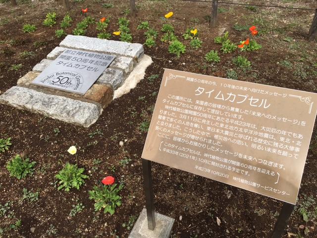 神代植物公園5