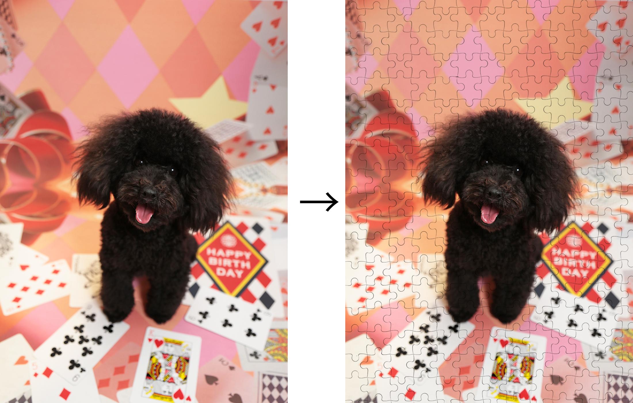 ペットの写真をジグソーパズルに