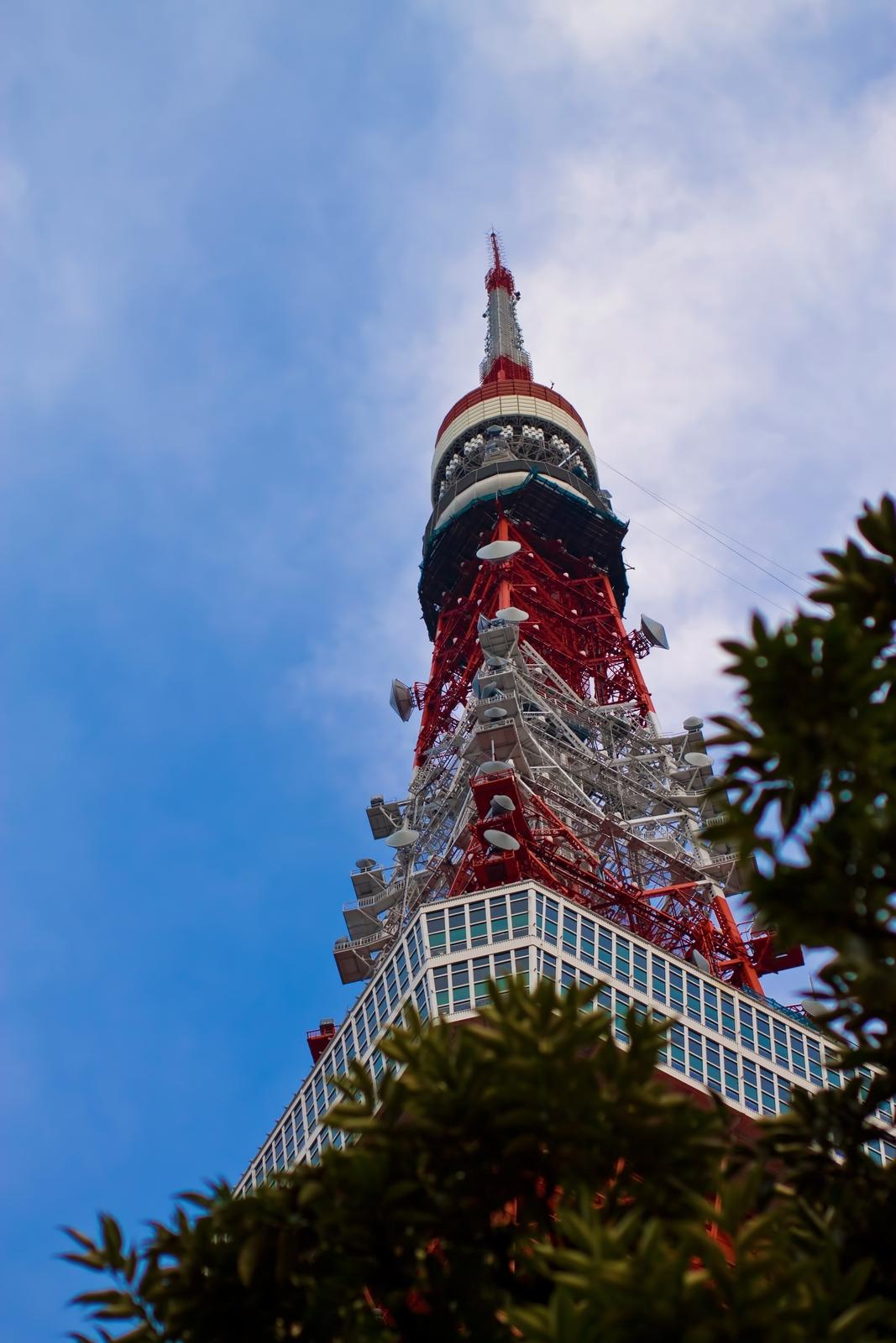 味覚の秋〜東京タワー編〜