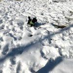 犬と雪遊び