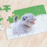 ペットの写真を使った、オリジナルパズル