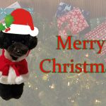 クリスマスイベントを彩るジグソーパズル