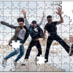 成人の日のジグソーパズル